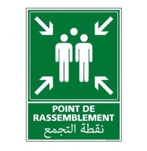 Panneau de signalisation Point de Rassemblement (B0230M)