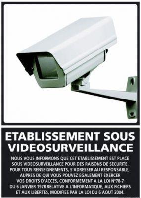 ETABLISSEMENT SOUS VIDEO SURVEILLANCE (G0831)
